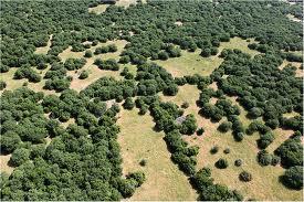 נוף טבע ומורשת בצפון רמת הגולן