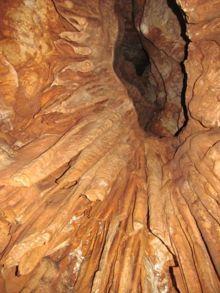"""מערת שכניה - באגפים התחתונים של המערה מזדקרים מתקרתה ארבעה קמינים קרסטיים חרוטיים, ובהם משקעי נטף - נטיפים ו""""אוזני פיל"""". צילום:  אורי אשכר"""