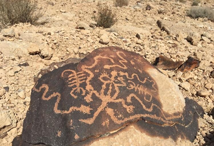 נחשים עקרבים ושרף. ציור סלע בהר כרכום צילום: שועל