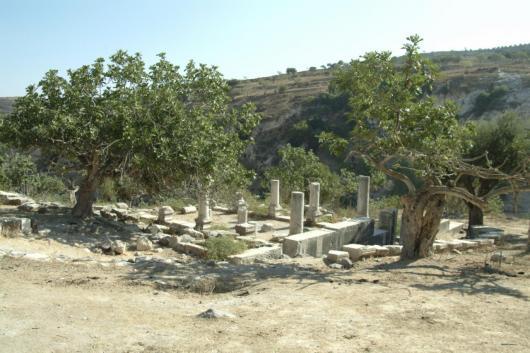 שרידי בית הכנסת בגוש חלב צילם: שמואל מגל, www.sitesandphotos.com