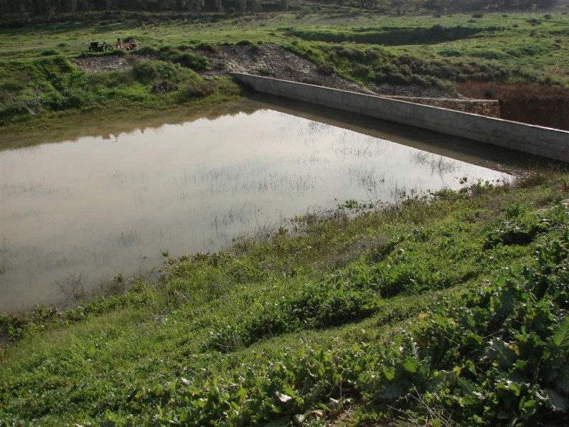 הסכר בנחל אדוריים צילום: Danny Gershoni