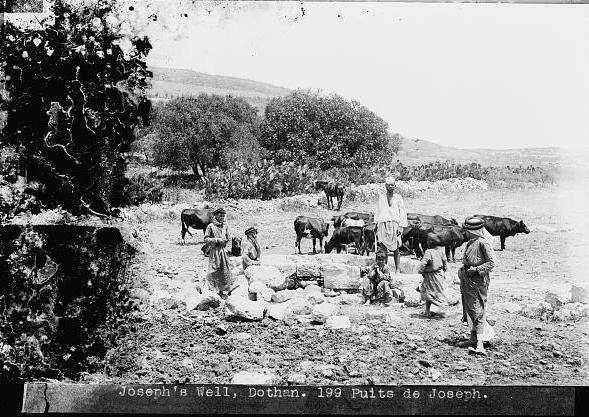 באר יוסף בעמק דותן
