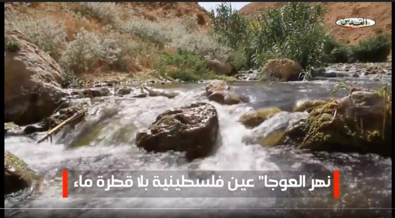 وادي العوجا - נחל ייט״ב צילום: alqudsnewspaper