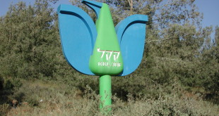 Kakal-bird