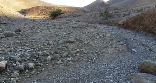 Khirbet el Mastarah צילום:Jordan Valley Excavation Project