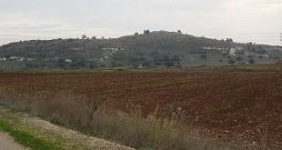 מראה_כללי_של_תל_צפית צילום: אבישי טייכר Avi1111