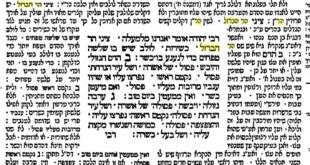 משנה סוכה פרק ג׳ - ציני הר ברזל