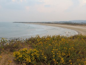 תצפית על החוף מתל תנינים
