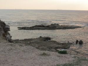 חוף תל תנינים