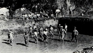 עבודות ניקוז בביצות כבארה (1925)
